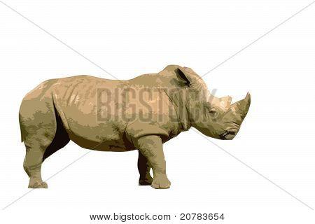 Rhino Cutout