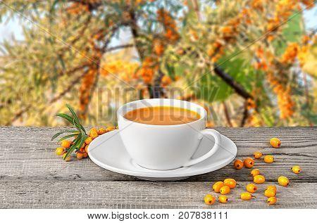 Tea of seabuckthorn berries on wooden table blurred garden background