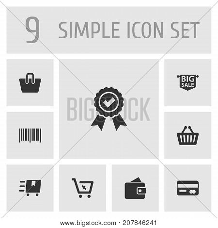Collection Of Guarantee, Bag, Billfold And Other Elements.  Set Of 9 Magazine Icons Set.