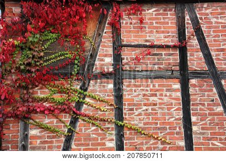 Truss house in Germany with red autumn leaves