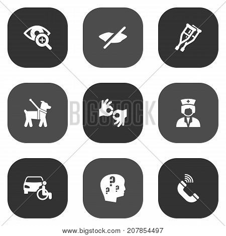 Collection Of Lens, Pet, Phone And Other Elements.  Set Of 9 Accessibility Icons Set.