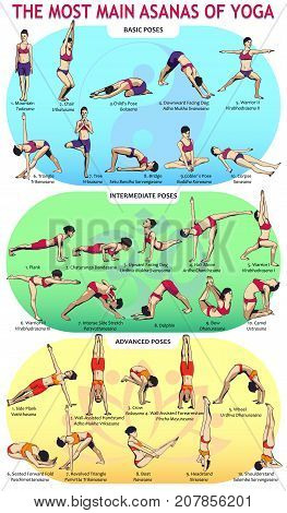 Vector illustration of the 30 most basic yoga postures. Female figures showing various asanas from the complex of yoga exercises.