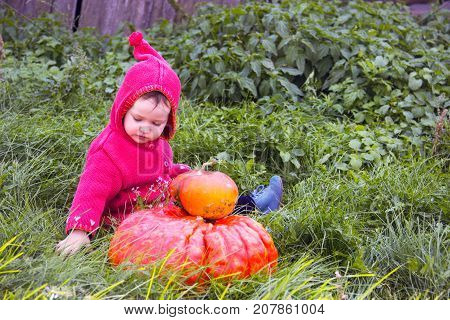 A Small Serious Child In A Purple Gnome Suit Sits On A Floor Of A Turn With Two Pumpkins In The Gras