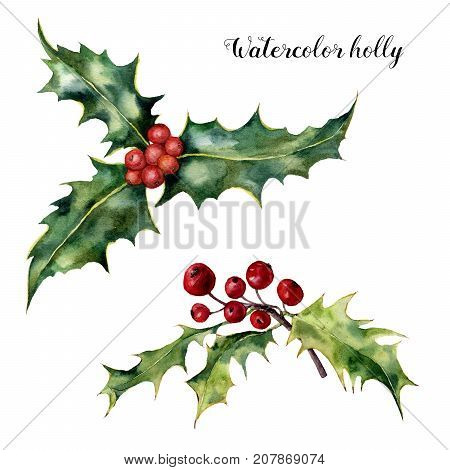 Watercolor holly set. Hand painted holly branch with red berry isolated on white background. Christmas botanical clip art for design or print. Holiday plant