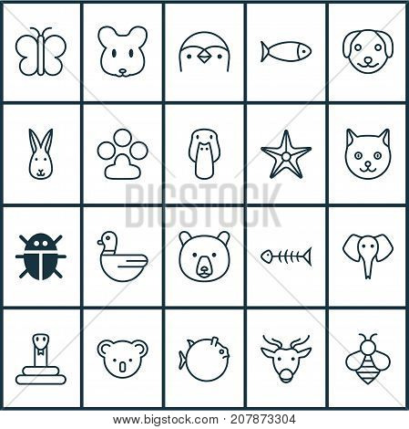 Nature Icons Set. Collection Of Beetle, Fish, Bunny And Other Elements