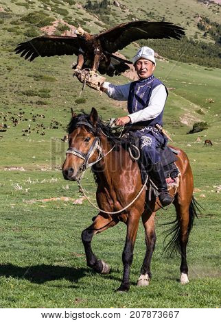 Eagle Hunter Holds His Eagles On Horseback, Ready To Take Flight
