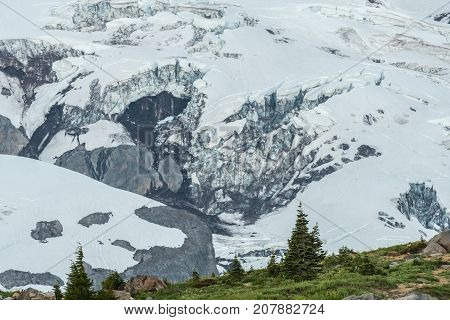 Paradise Glacier On Mount Rainier