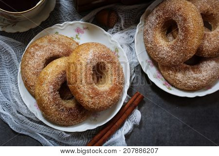 Baked Cinnamon sugar Apple cider Doughnuts / Donuts on dark moody background