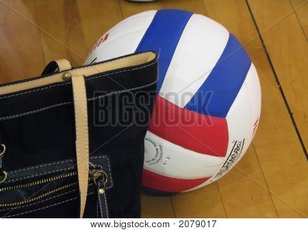 Purse Volleyball Court