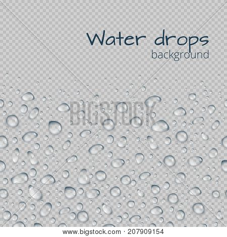 Horizontal seamless border of transparent water droplets. Editable vector illustration with space for text.