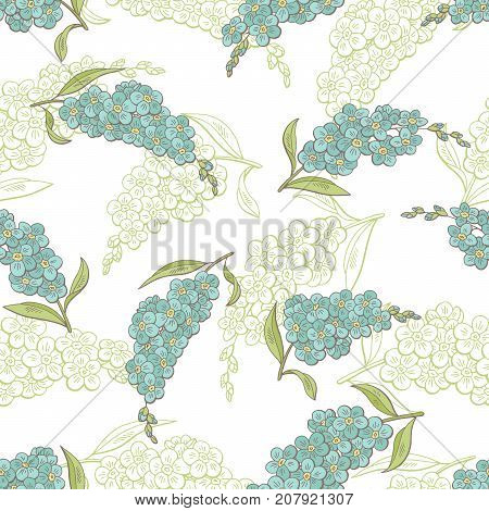 Forget me not flower graphic color seamless pattern sketch illustration vector