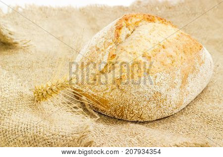 Whole loaf of the wheat sourdough hearth bread with bran and ear of ripe wheat on a sackcloth closeup
