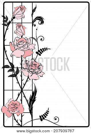 vector frame with roses in black white and pink colors