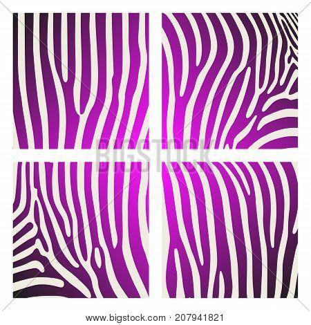 Set of animal pattern. Imitation print of skin of zebra. Black purple stripes on white background