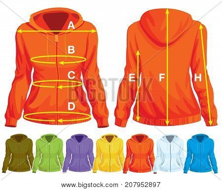 Sweatshirt template with measurement and colorful collection of sweatshirts