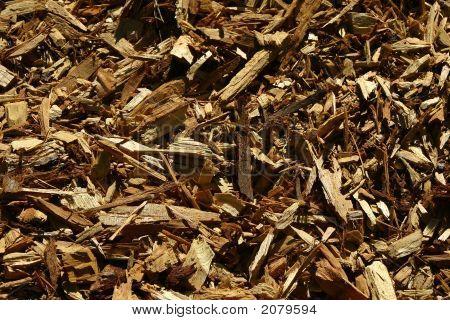 Brown Bark