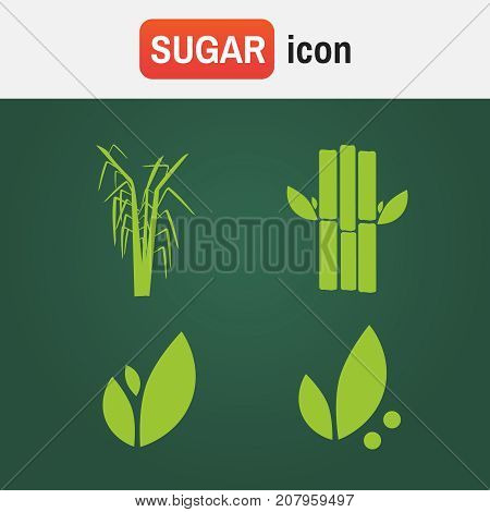 Cane Sugar Sugarcane. Sugar Cane Flat Icons Set Illustration Vector