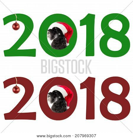 Small black dog (Miniature Schnauzer) in Santa's hat looks out the sign 2018. Dog as a symbol of new year against Chinese calendar. Set of two images. White background.