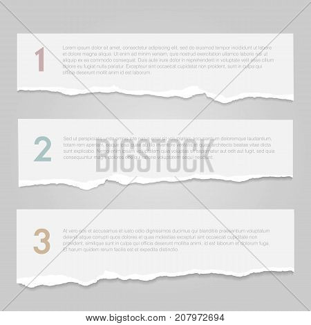 Realistic lacerated white paper banners. Vector illustration.