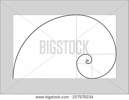golden ratio vector  golden section spiral chart