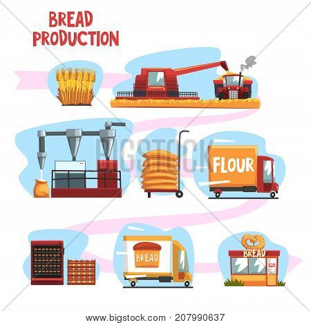 Production of bread from wheat harvest to to freshly baked bread in shop set of cartoon vector Illustrations isolated on a white background