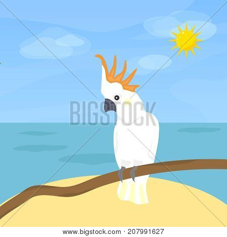 Parrot Cockatoo a bird. Parrot cucumber on the background of the sea and sky. Flat design vector illustration vector.