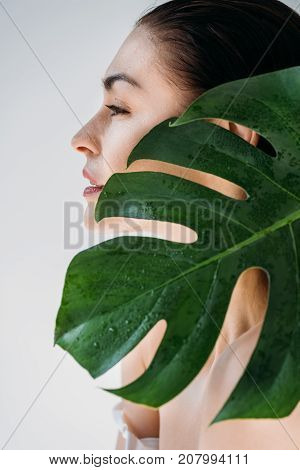 Young Woman Posing With Fresh Leaf