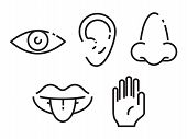 Icon set of the five human senses: vision eye smell nose hearing ear touch hand taste mouth with tongue. Simple minimal line icons vector illustration. poster