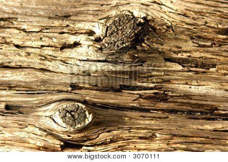 Two Knots In Wood Grain