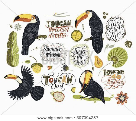 Big Vector Graphic Set With Tropical Toucan Birds And Lettering Quotes. Animal And Botanic Collectio