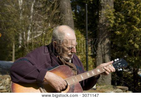 Senior Guitarist