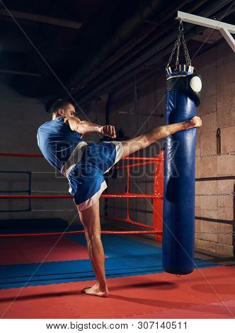 Athletic Male Kick Boxer Training Hard Kickboxing And Preparing For Fight, Kicking And Punching Heav