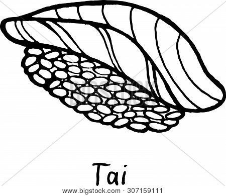 Sushi Tai - Sketch Illustration. Nigiri With The Bream Fish And Rice. Japanese Seafood. Vector Illus