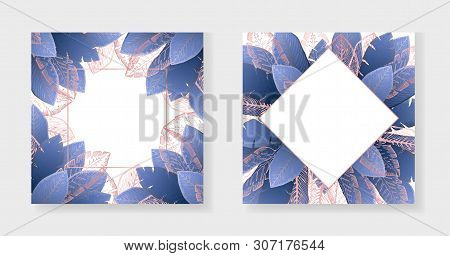 Collection Of White Square Backgrounds With Bright Dark Blue And Outline Pink Tropical Leaves. Summe