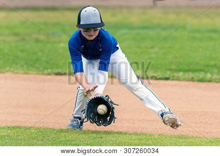 Youth Baseball Player In Blue Uniform Fielding A Ground Ball Into His Glove In The Infield During A