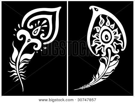 Beautiful peacock feather. vector illustration