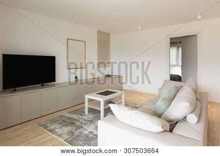 Modern living room with large sofa. Nobody inside. Luxury house.