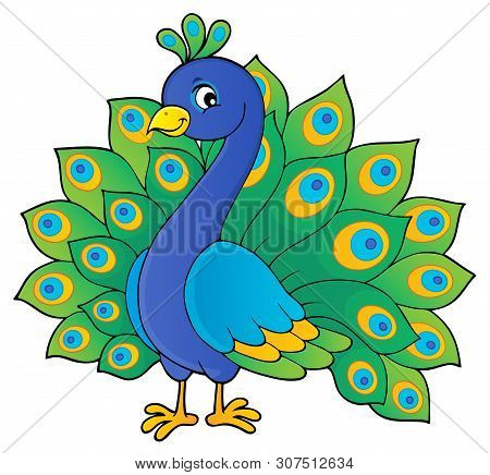 Peacock Theme Image 1 - Eps10 Vector Picture Illustration.
