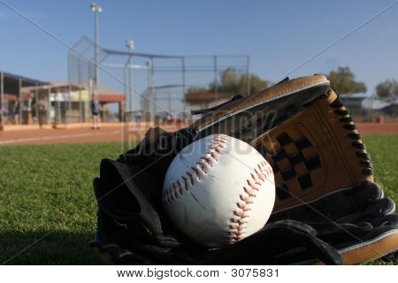 Softball With Glove In The Outfield