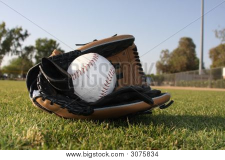 Softball In Leather Glove