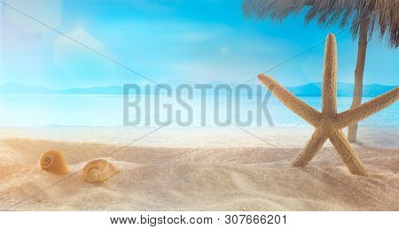 Beach Summer Background. Summer Holidays Wih Star Fish On Sand. Sandy Beach