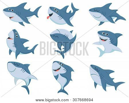 Cartoon Sharks. Comic Shark Animals, Scary Jaws And Ocean Swimming Angry Sharks. Marine Predator Fis