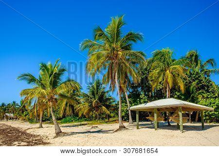 Hammocks On The Beach Under A Hut On South Hole Sound, Little Cayman, Cayman Islands