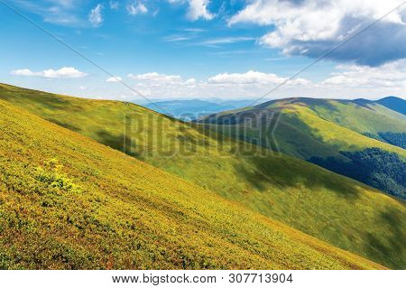 Wonderful Summer Landscape In Mountain. Green Grassy Slopes Of Alpine Meadows Covered In European Bl