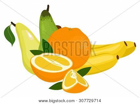 Oranges, Pear And Bananas. Vector Illustration On A White Background