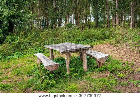 Simple Rough Wooden Picnic Set Consisting Of A Table And Two Benches On The Edge Of A Dutch  Forest.