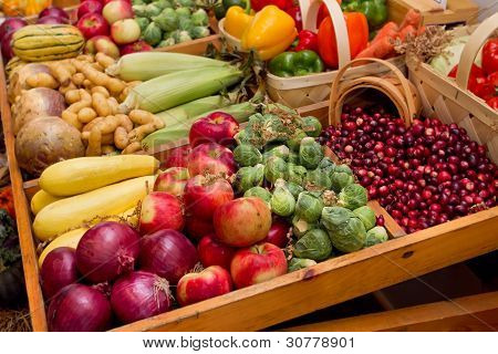 Fall Harvest Vegetables