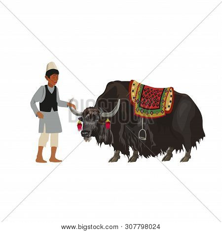 Tibetan Man With Domestic Yak. Vector Illustration Isolated On White Background