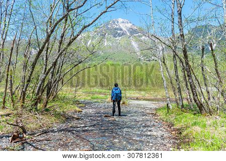 Male Hiker Standing In The Forest Of Kamikochi In Northern Japan Alps.