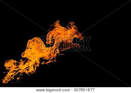 Fire In The Form Of The Mouth Of An Animal Or A Dragon. Fire Flames On Black Background. Fire On Bla